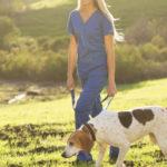 So halten Sie die Gelenke Ihres Hundes gesund