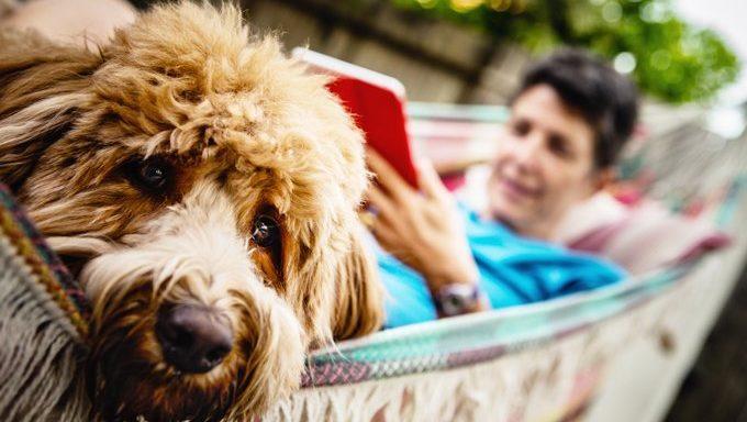 Ein Hund und eine Frau sitzen in einer Hängematte.