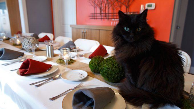 Eine schwarze Katze sitzt oben auf einem Feiertagsabendtisch.