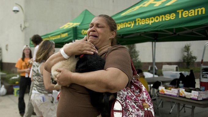 Frau hält Katzen im Naturkatastrophenschutz