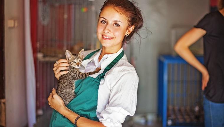 junge Frauen hält eine Katze