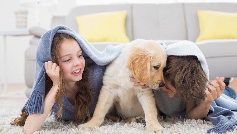 Bruder und Schwester mit Welpen unter Decke, die zu Hause auf Teppich liegen