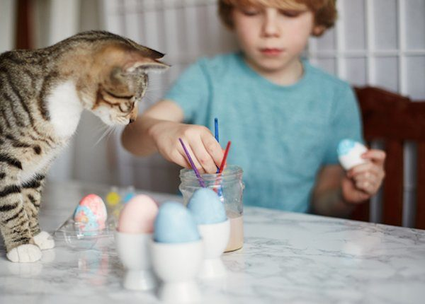 Cat and kid crafting