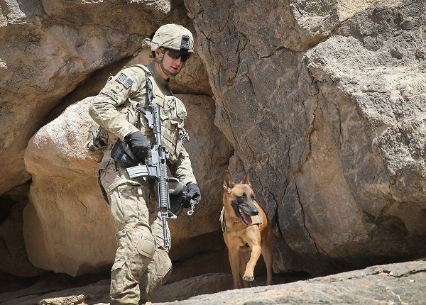 KANDAHAR, AFGHANISTAN - FEBRUARY 28: SPC Daniel Jackson from Centralia, Kansas and his dog Bailey with the 904th Military Police Detachment search through caves looking for weapons caches during a patrol with the U.S. Army