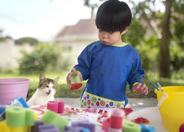 Asian toddler boy learn to paint with sponge. Art and craft session. Cat curiously looking at the process. Art and craft class.