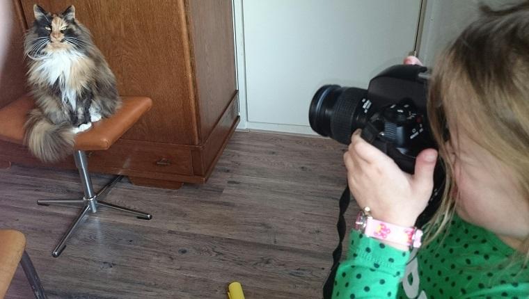 Mädchen, das Katze zu Hause fotografiert
