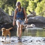 A hiker and her dog cross the shallow part of a river in the western United States. They are on a day hike and the woman is carrying a small backpack.