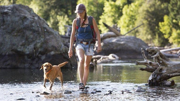 Eine Wandererin und ihr Hund überqueren den flachen Teil eines Flusses im Westen der Vereinigten Staaten. Sie sind auf einer Tageswanderung und die Frau trägt einen kleinen Rucksack.