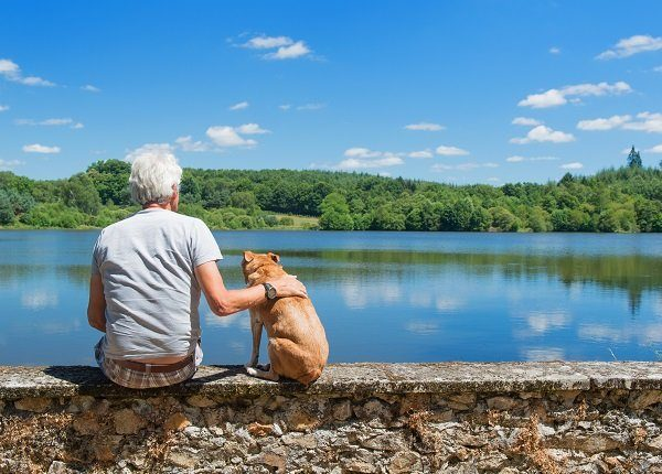 Senior man with old brown dog on wall in nature landscape with lake