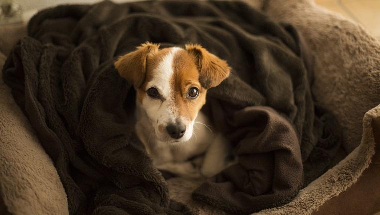 Warme Bettwäsche