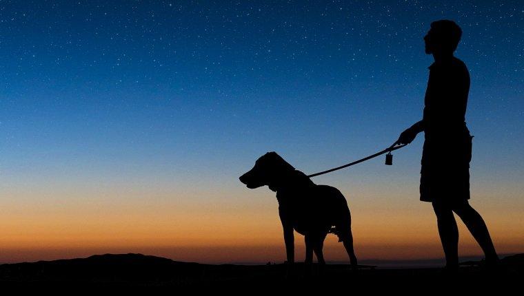 Mann, der in einer klaren Nacht mit Hund spazieren geht