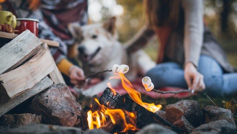 Bleiben Sie in der Nähe von Feuern, Grills und Feuerwerken sicher